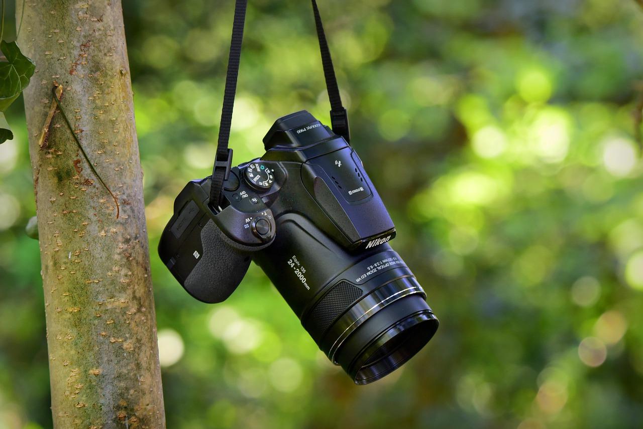 cámara digital, lente, dslr